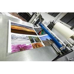 Flex print