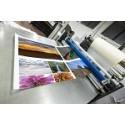 Flex print (10 pièces min, quadri)